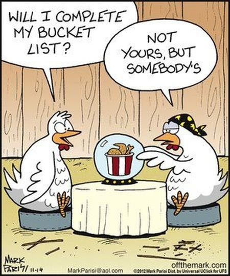 chicken cartoon 1