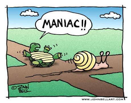 road rage maniac_179505